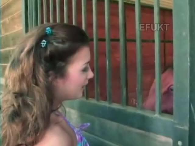 Video prohibido 2 hombres 1 caballo